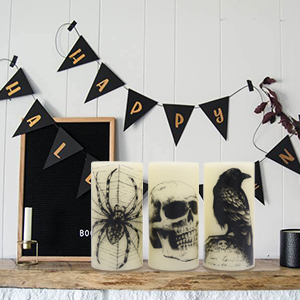 Halloween Flameless Flickering Battery Pillar Candles with Skull, Spider Web, Crow Raven Decals
