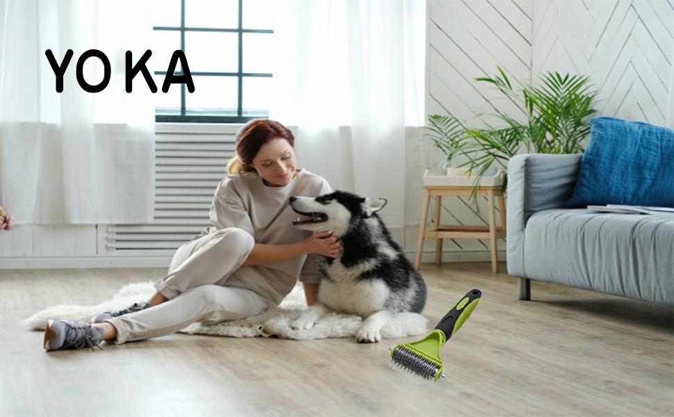 rake comb for dog