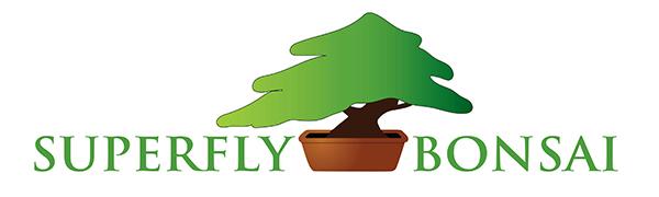 superfly, bonsai