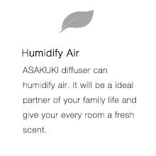 essential oil diffuser humidifier 500ml