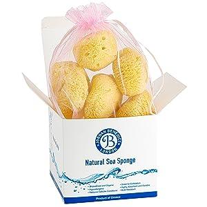 exfoliating face sponge sponges body sea sponge natural konjac sponge face sponge natural sponge