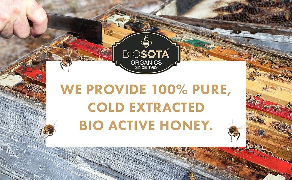 Bio Active Manuka Honey Australian