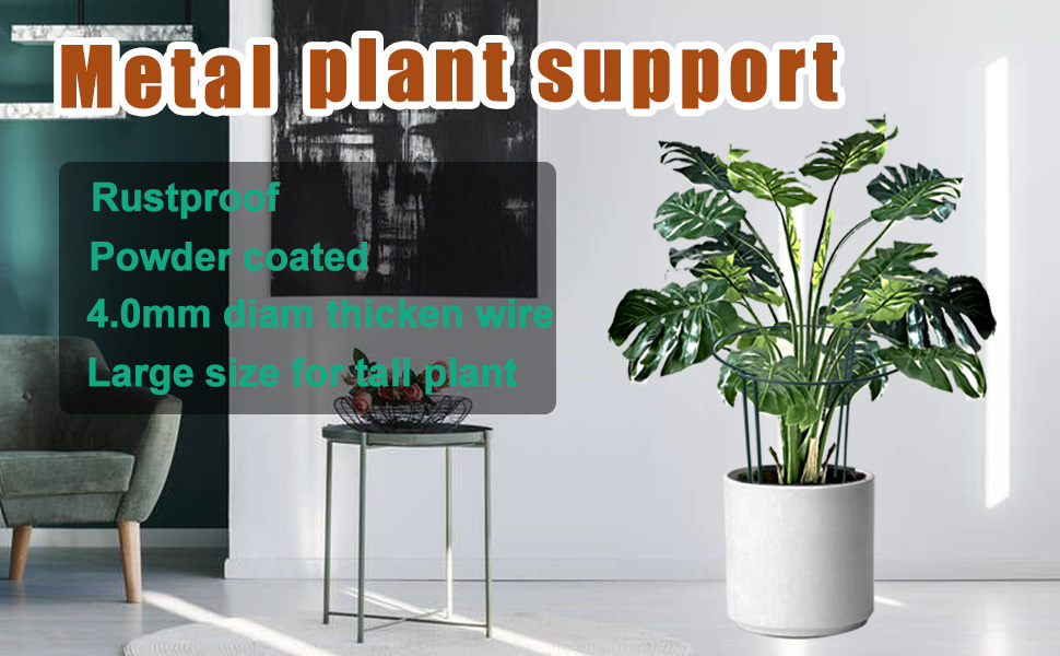 plant support s