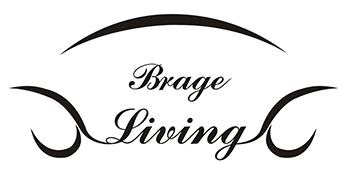 brage living elegant barstools modern contemporary shiny adjustable