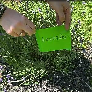 Garden Marking