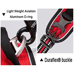 D-ring and Buckle