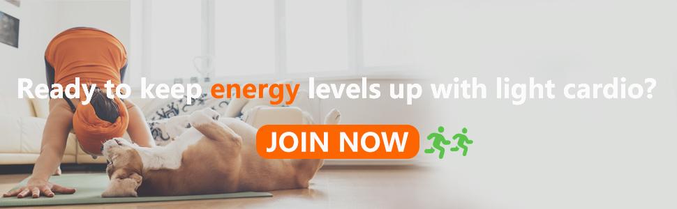 HOMEFITER MINI EXERCISE BIKE UNDER DESK PEDAL EXERCISER KEEP ENERGY LEVELS UP