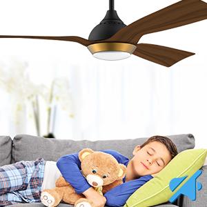 Utilisez le ventilateur de plafond toute l'année!
