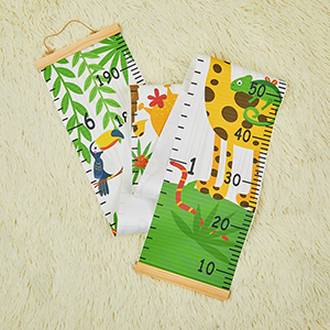 Baby Growth Chart Ruler for Kids