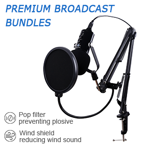 Stand up Mic for Gaming