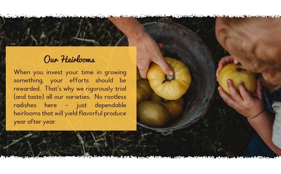 Our Heirloom Varieties