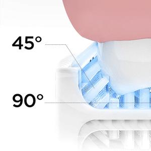 all round braces