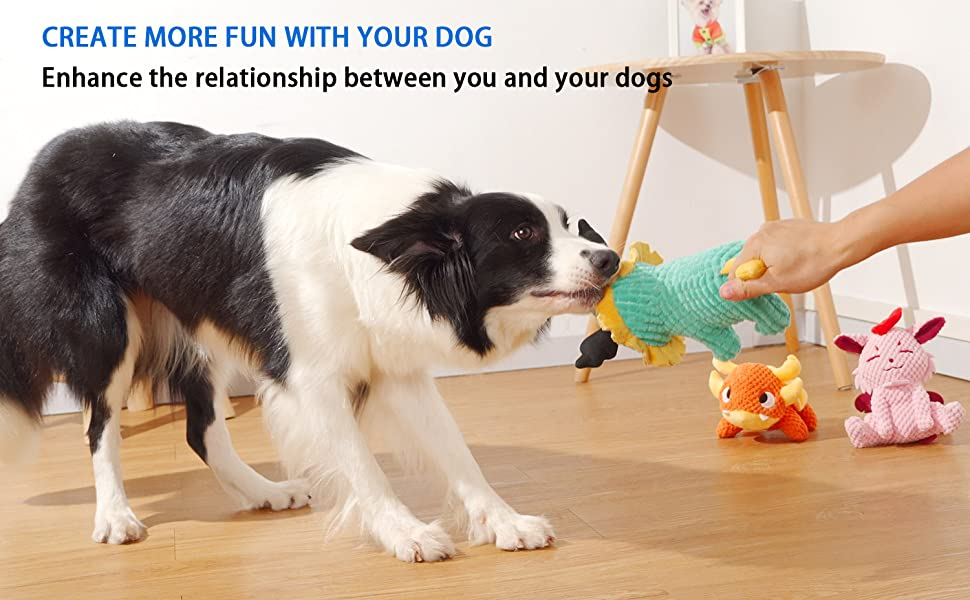 PLAY WITH YOUR DOGS