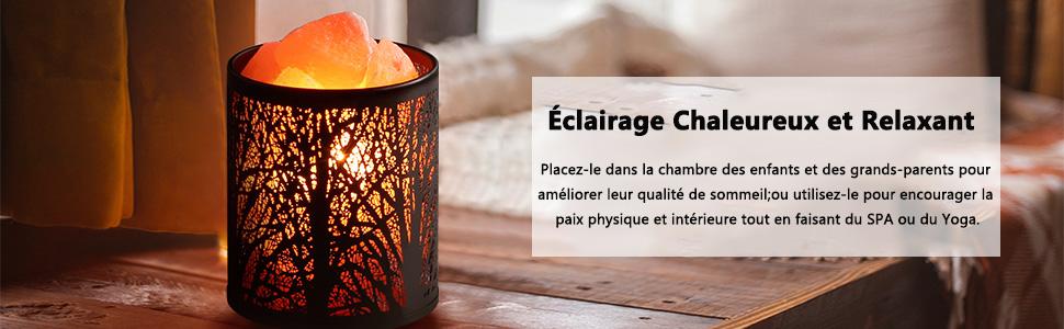 Zanflare Lampe en sel Conception danimaux fauves lampe de panier en m/étal Lampe de Sel Cristal Himalaya avec ampoule LED contr/ôle de gradateur