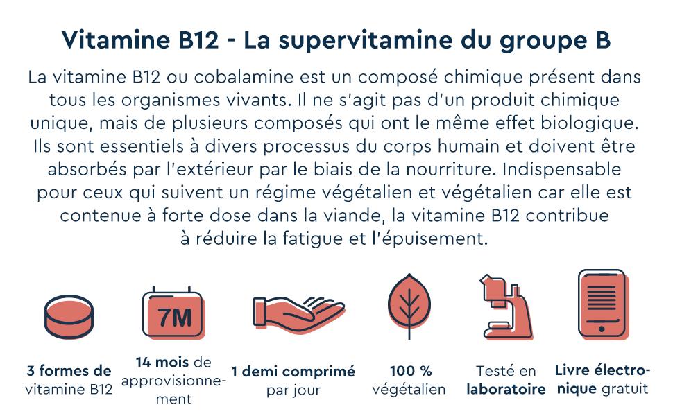vitamine vitamin b12 vegan methylcobalamine vegetalien vegetarien comprime capsule