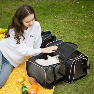 cat carrier large