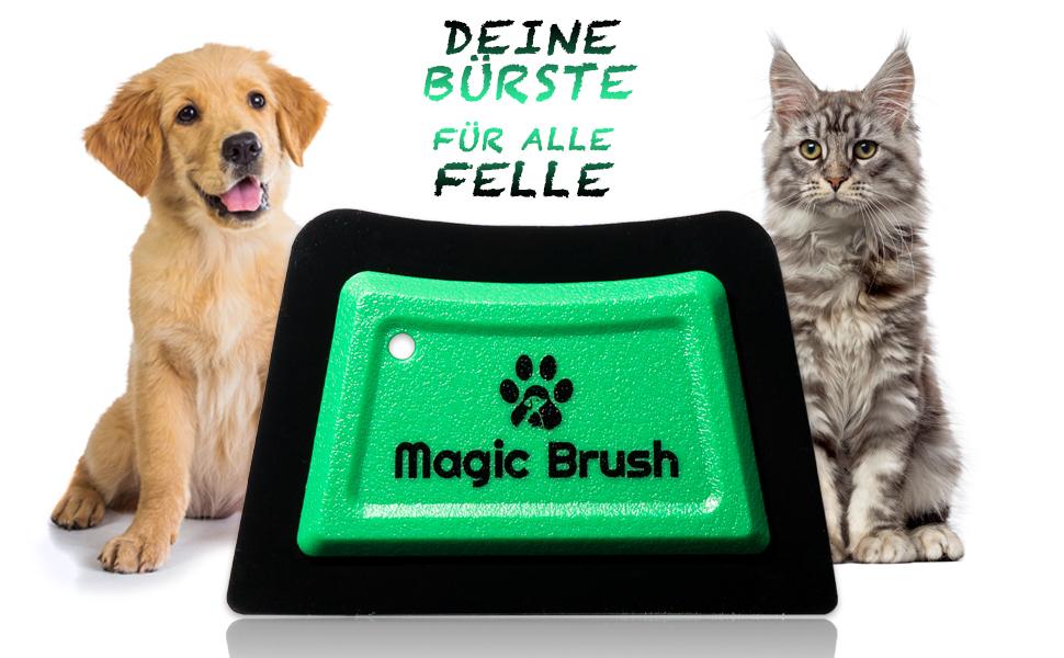 Dog hair, cat hair, remove, clean, lint roller, lint brush, small animal hair, horse hair.