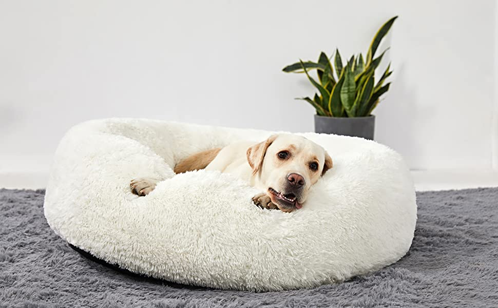 Reducing Anxiety Dog Bed & Dog Calming Bed