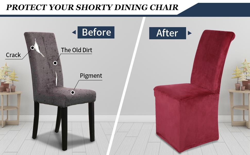 Protect Your Dining Chair