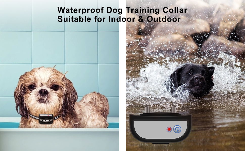 Waterproof Dog Training Collar Suitable For Indoor& Outdoor