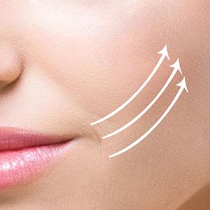 nose lip