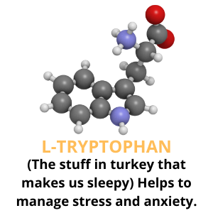 calming treats for dogs separation anxiety l-tryptophan
