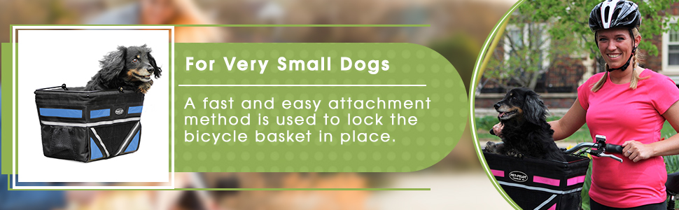 For Very Small Dogs