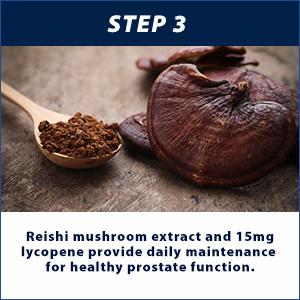 Reishi Mushroom and Lycopene