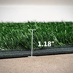 dog grass pee pad