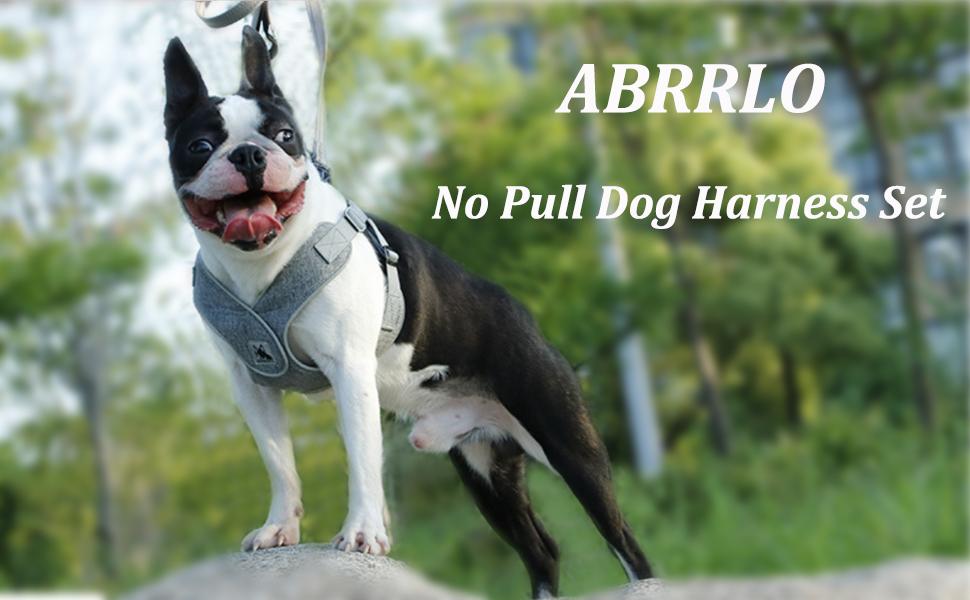 abrrlo harness