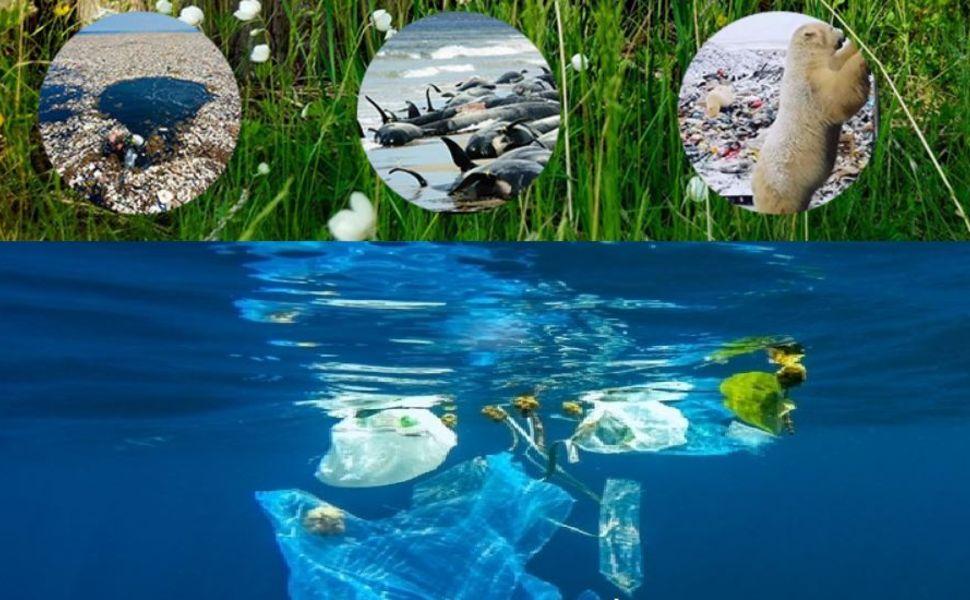 Reduce use plastic
