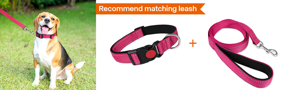 hotpink quick release buckle dog collar 1