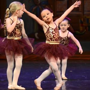 Ballettstrumpfhose Damen Performance
