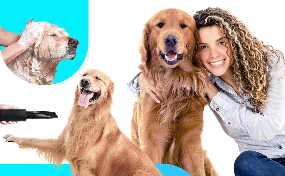 dog dryer, pet hair dryer