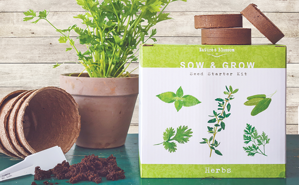 Nature's Blossom Herb Garden Kit  5 Herbs To Grow From Seed: Basil,  Cilantro, Sage, Parsley and Thyme Seeds, Ready For Planting  Beginner  Gardeners