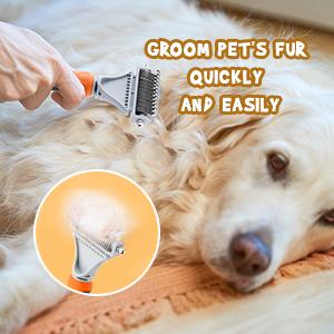 groom pet's hair