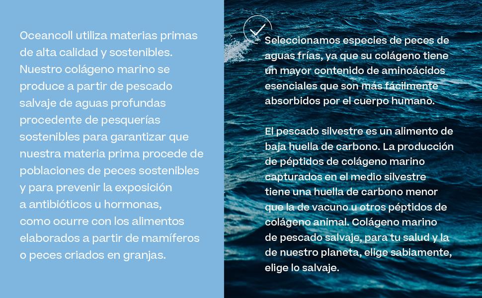 Oceancoll Original | Colágeno Marino Hidrolizado | Con Vitamina C y Proteína | Suplemento Alimenticio para Piel, Músculos, Cartílagos, Tendones y ...