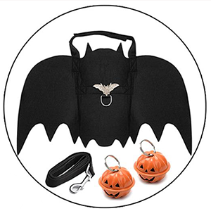 The dog bat wings with two pumpkin bells.