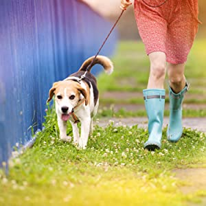 DOCO LOCO Step-in Dog Harness - Colorful Designs, Comfort Fit, Good for Training and Walking