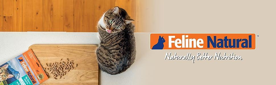 feline natural freeze dried cat food