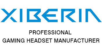 PROFESSIONAL GAMING HEADSET WIRELESS