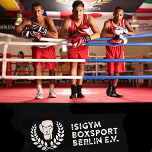 Sportstech Set de Boxeo para niños, Saco de Boxeo Reforzado 60x40 cm y fijación de 360°,BXP60 Recomendado por la Federación de Boxeo de Berlín (Saco de Boxeo sin Guantes de Boxeo): Amazon.es: