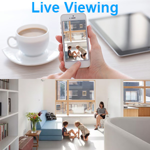 Live view hidden camera wireless speaker hidden camera