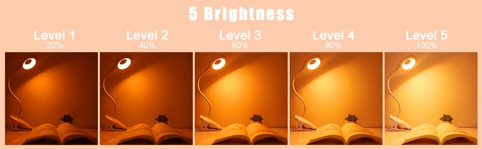 reading light