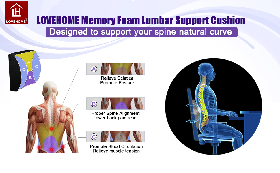 LOVEHOME Lumbar Support for Office Chair