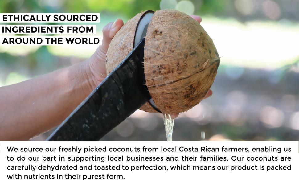 coconut pic