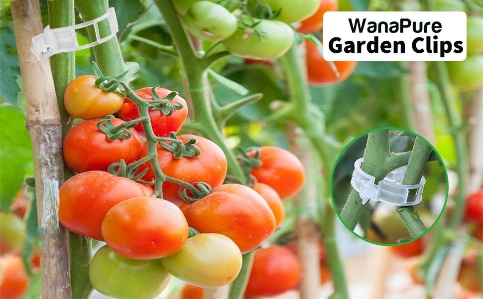 garden clip