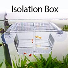 It can be used as fish acclimation box