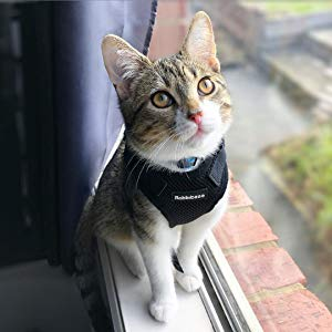 Cat Harness for Walking Escape Proof for Small Medium Cats Adjustable Cats Vest Harnesses