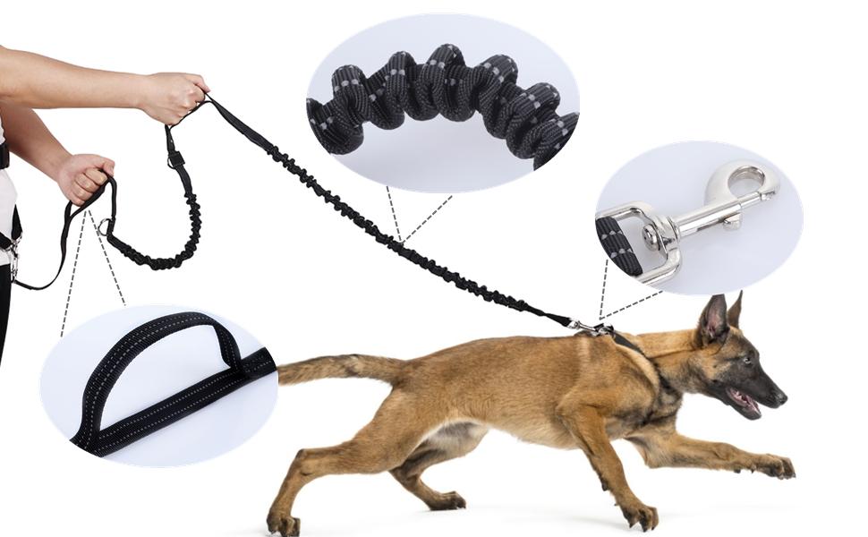 correa cintura para perros